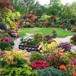 176436_ogrod-krzewy-kolorowe-kwiaty-awka-altana - Kopia