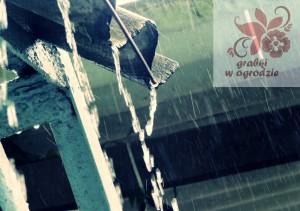 rain-258991_1920